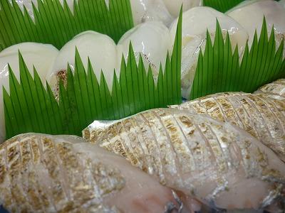 タチウオのあぶり寿司